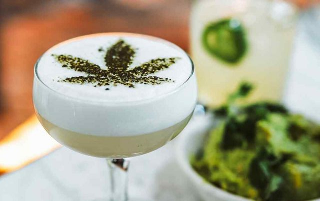 http://medigreen.bold-themes.com/dispensary/wp-content/uploads/sites/6/2019/01/events_home_04-640x403.jpg